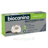Biocanina Multivermyx Comprimés Vermifuge Chat B/2 à HEROUVILLE ST CLAIR