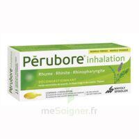 Perubore Caps Inhalation Par Vapeur Inhalation Plq/15 à HEROUVILLE ST CLAIR