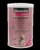 Biocanina Lait Poudre Maternisé B/400g à HEROUVILLE ST CLAIR