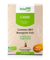 Herbalgem Gomme Cassis Bio B/24 à HEROUVILLE ST CLAIR