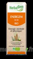 Herbalgem Energem Solution Buvable Bio Fl Cpte-gttes/30ml à HEROUVILLE ST CLAIR
